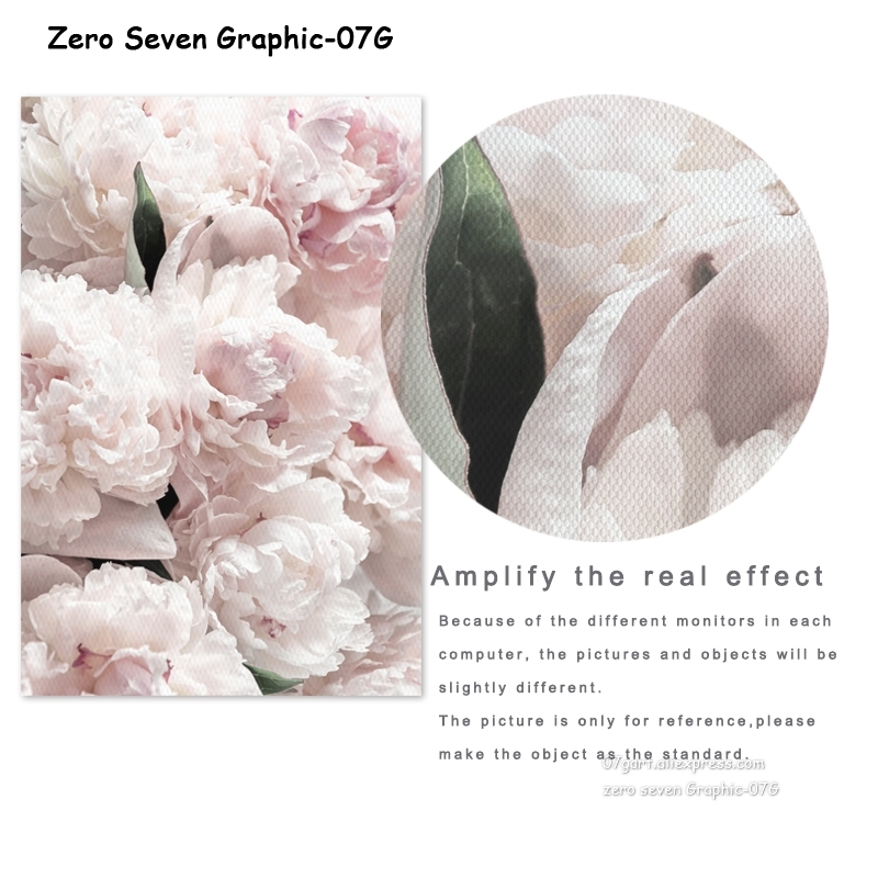HTB1QfkDRNTpK1RjSZFMq6zG VXaB Feather Peony Blossom Canvas Painting Posters And Prints Picture Living Room Art Wall Home Decoration