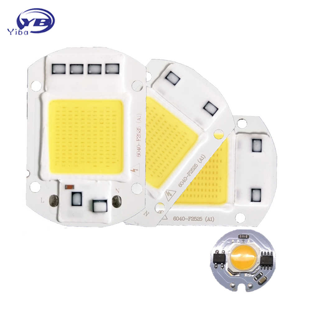 LED COB Chip 220V 240V 3W 5W 7W 9W 20W 30W 50W cold white warm white LED Bulb Lamp Input Smart IC Flood Light Spotlight