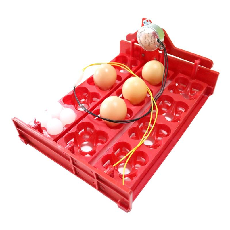 İnkubatorda Yumurta Tepsisi 12 Yumurta / 48 Quş Yumurtası 220V / - Ev heyvanları və zoo məhsullar - Fotoqrafiya 6