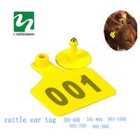 ฟาร์มสัตว์บัตรประจำตัวประชาชนวัววัวTPU501-1000หูแท็กสัญญาณกับW Ordโคนมหูแท็กพิมพ์หัวทองแดงต่างหู