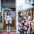 Summer Matsuri Japanese Women Sakura Cat Print Haori Kimono Yukata Coat Outwear