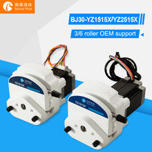 Easy Install Flexible Tubing OEM Peristaltic Pump Stepper Motor 24v Oil Chemicals Metering