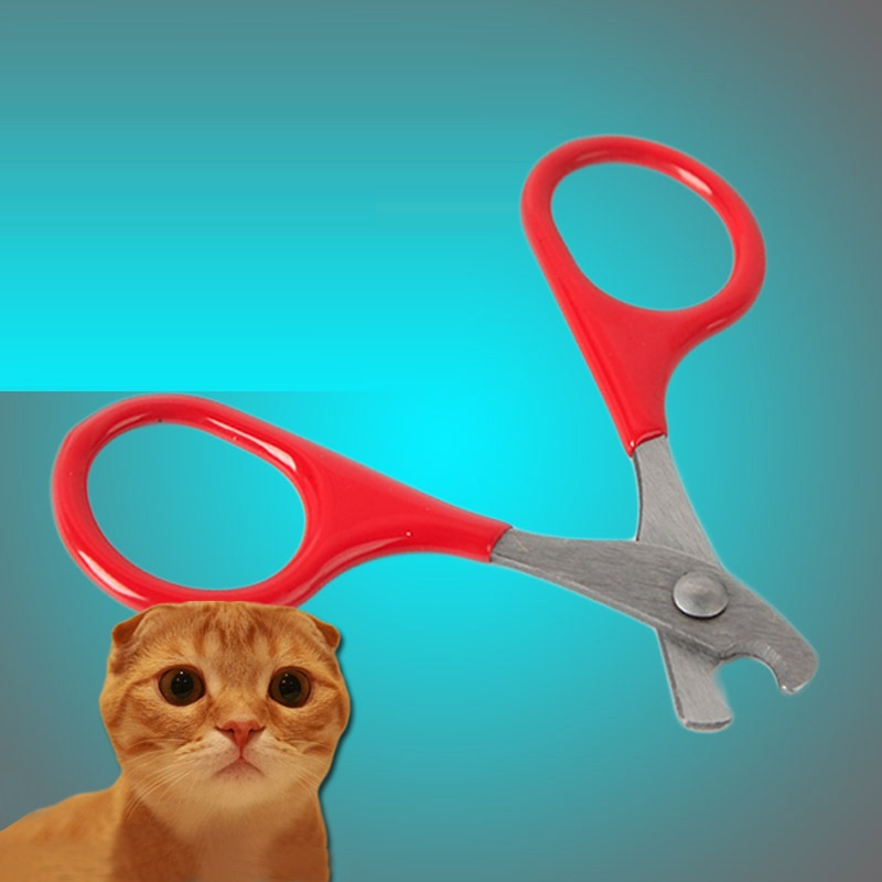 Pet Cat Claw Care Tools Cat Scissors For Nails Pet Supplies Accessories Cat Cleaning Tools For Claw Nails Scissor Pet Products
