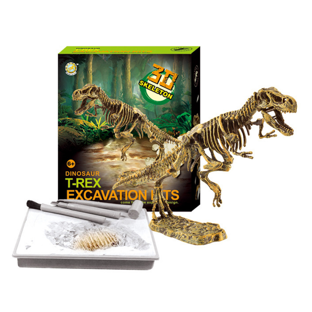 3D Dino Fossil Bones Excavation Science Kit Dig Up Dinosaur and Assemble a T Rex 3D Skeleton Ancient Animal Excavation Model