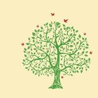 Venda quente Grande Árvore Adesivo De Parede Decalque Da Parede Da Árvore Do Pássaro DIY Decoração Adesivo de Parede Árvore Genealógica Árvore Papel De Parede