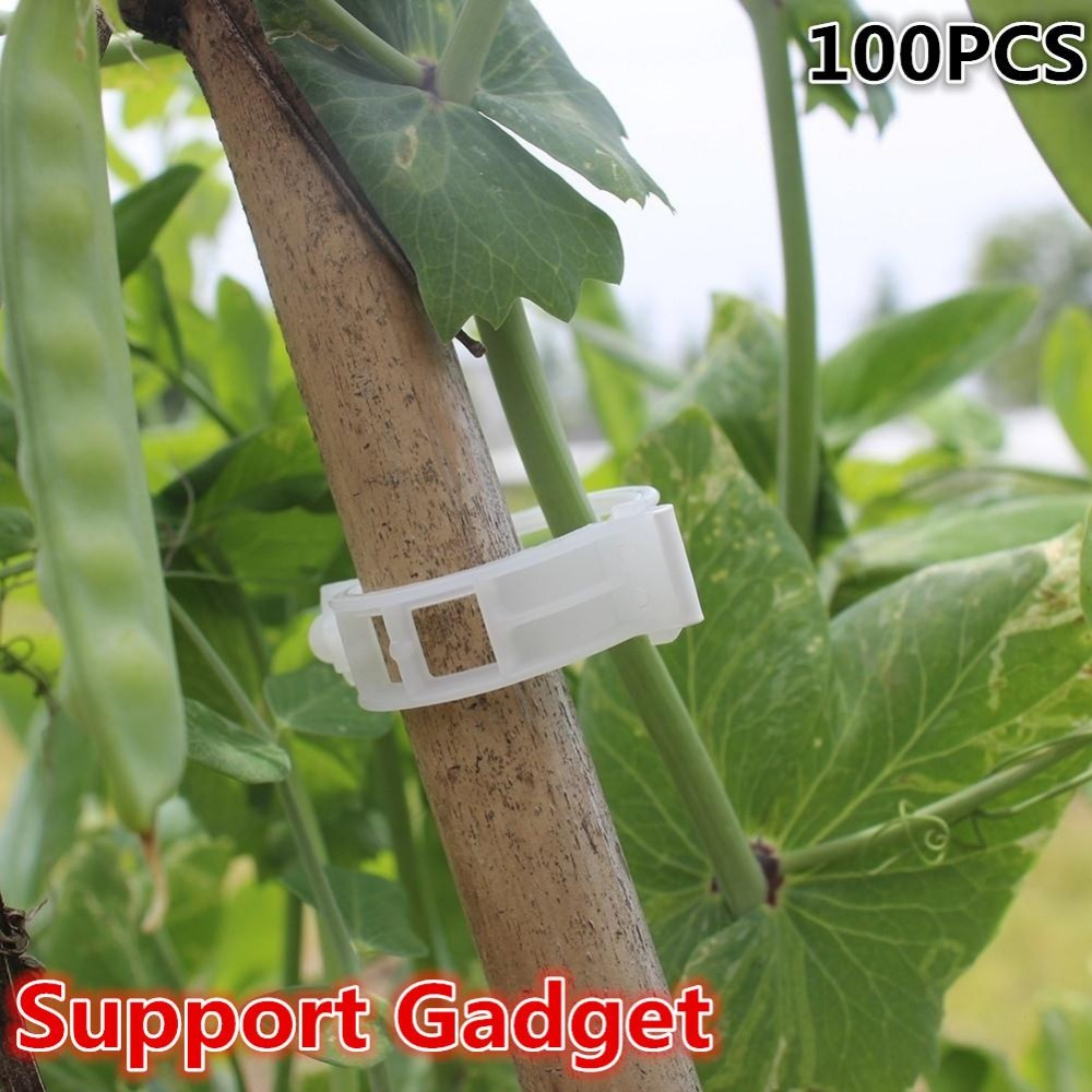 Useful Practical White Tomato Clips Connects Plants Supports Vines Trellis  Cages Fixed Garden Gadget Accessories(