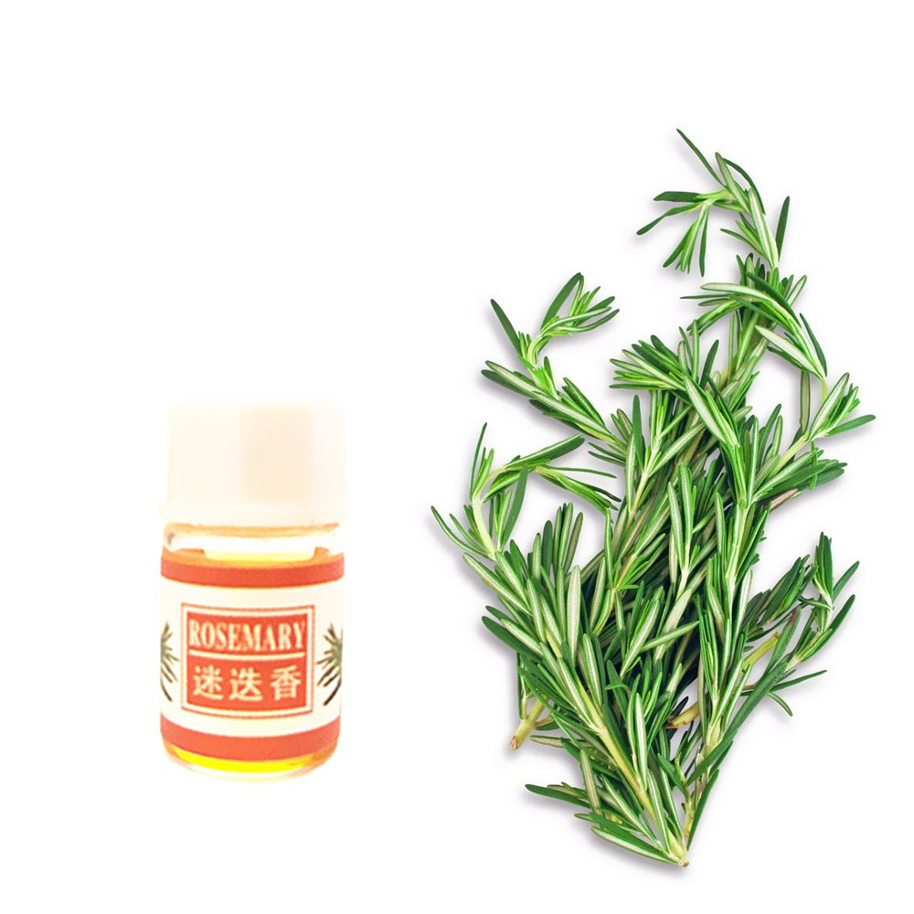 Useful Women Beauty Rosemary Essential Oil 12 Kind 3ML Fragrance Aromatherapy