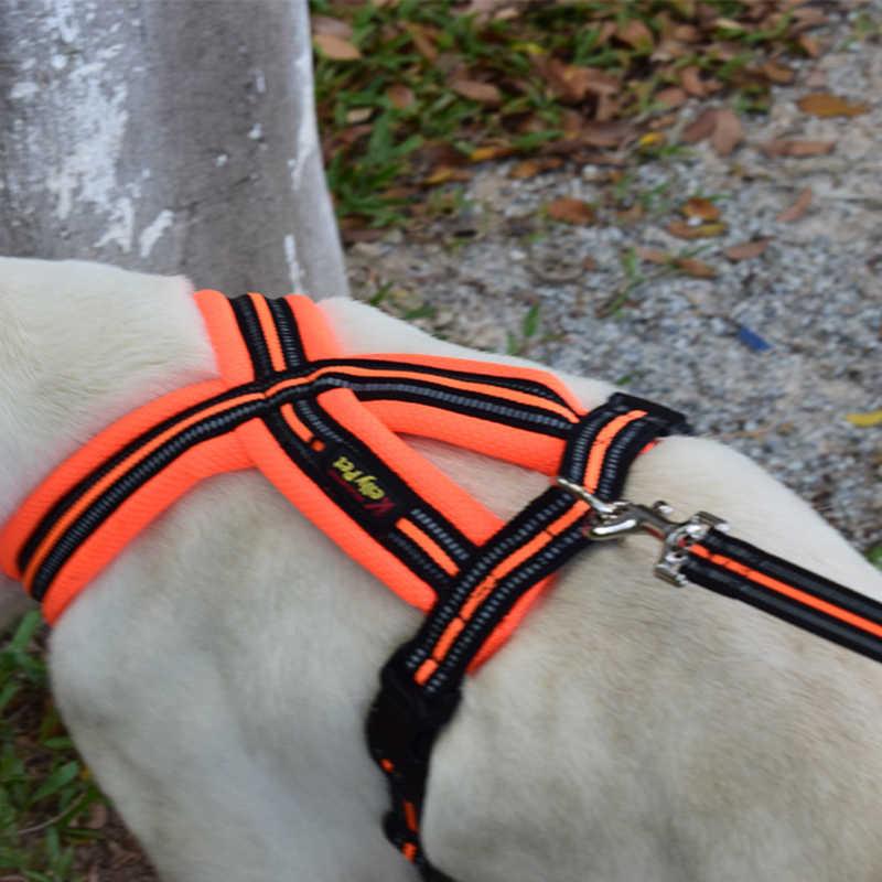 Hoomall ナイロン反射犬ハーネスリーシュリードセット小中犬子犬チワワヨーキー屋外ペット犬ツール
