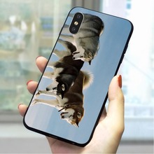Husky dog Soft TPU Case for iPhone 8 Plus Fashion Phone Cover for iPhone X Xs Max XR 5 5s se 6 6s plus 7 Cases Skin цена и фото