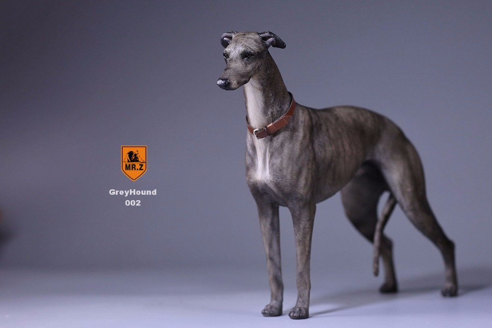 "Mr.Z 1//6 Scale Greyhound Figurine Dog Statue Lifelike Animal Model F 12/"" Figures"