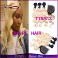 Grade 8a Ombre Malaysian Virgin Hair Body Wave 4pcs Malaysian Body Wave 2 Toned Ombre 1b 613 Blonde Human Hair Weave