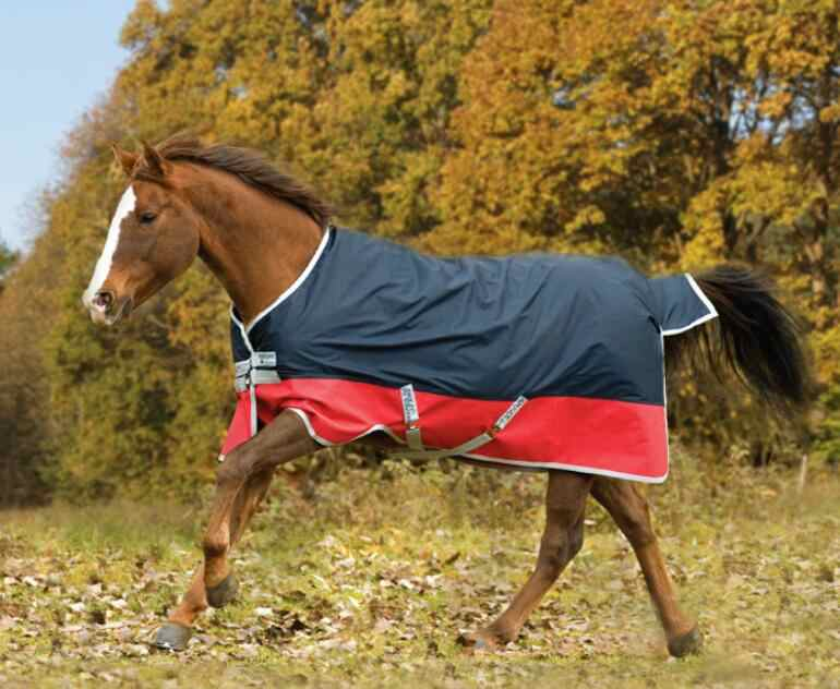 Spring And Autumn Horsecloth Waterproof Horse Rugs Windproof Horses Caparison