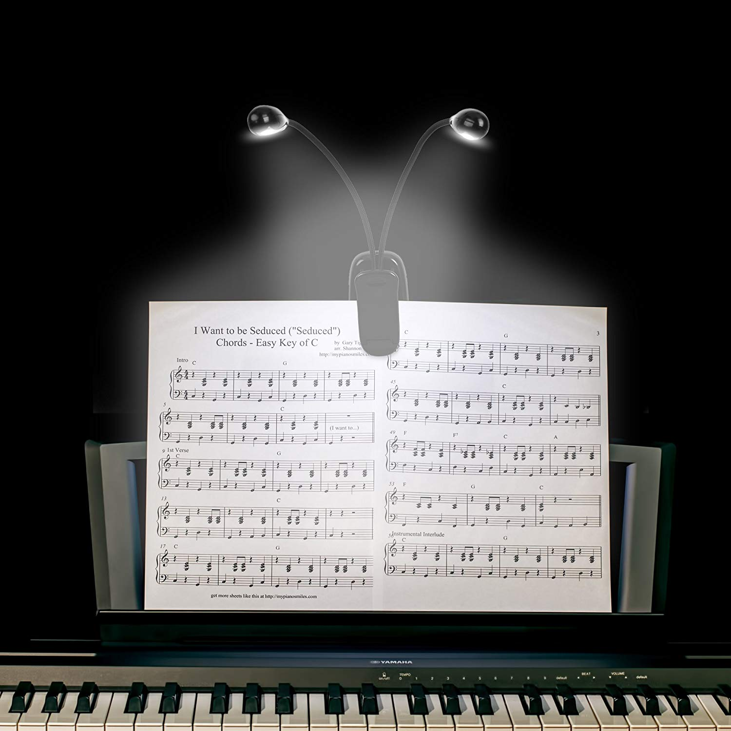 Music Stand Light, Clip On LED Book Lights, USB Or AAA Battery , 4 Brightness Levels, For Piano Player, Kids, Travel (Dual Arm)