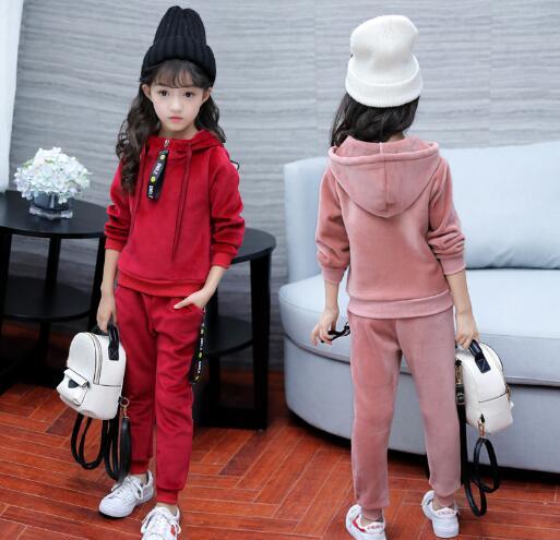 Children Clothing Sets Autumn Winter Baby Girl Sports Suit Velvet Hoodies Coat Pant Sets Kids Tracksuits Girls Clothes Suits in Clothing Sets from Mother Kids