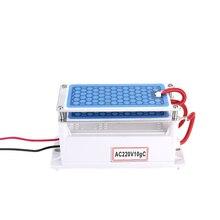 Generador de ozono cerámico portátil de 10 g/h, doble placa integrada, ozonizador, purificador de agua y aire para fábrica química