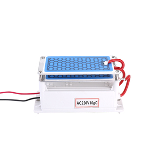 Image 1 - Portable 10g/h Ceramic Ozone Generator Double Integrated Plate Ozonizer Water Air Purifier For Chemical Factory