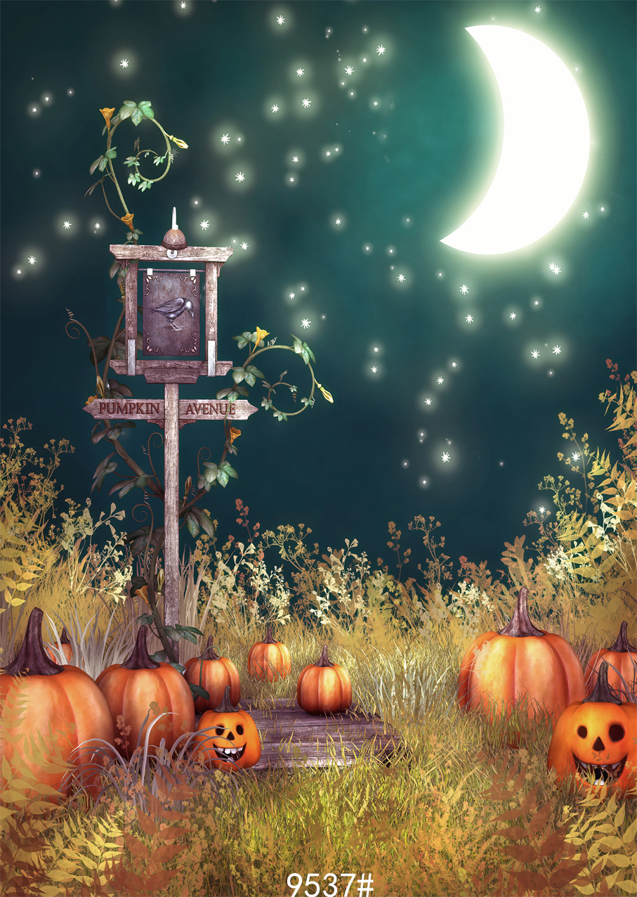Photography background halloween children studio backdrops for photo shoot computer  printing   Pumpkin Night moon terror ashanks pro photography studio photo backdrops frame background support system 2m x 2 4m stands for photo shoot carry bag