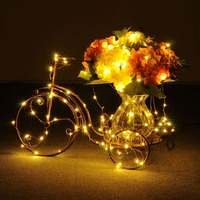 100pcs 2M 20LEDs LED Starry String Lights Fairy LEDs Copper Wire Decorative Light for Xmas Garland Party Wedding Decoration