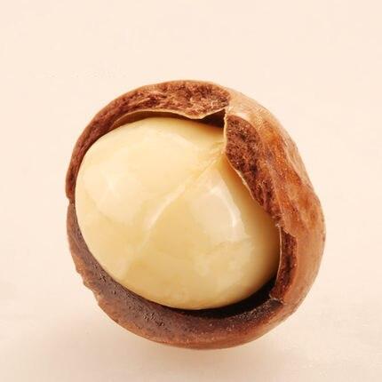 Macadamia nuez fruto seco de