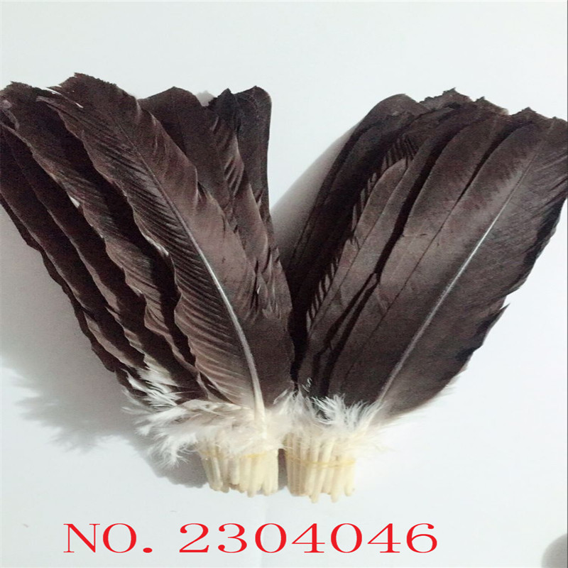 Z & Q & Y new natural 30eagle feathers 45-50CM (18-20 inch) wings hair DIY collection fan production