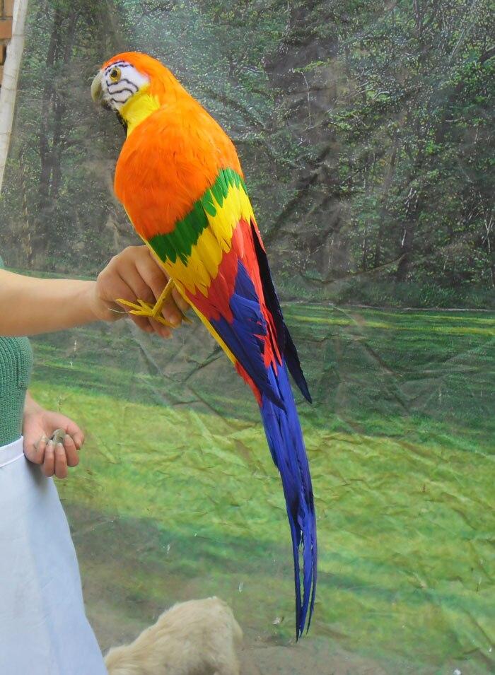 Simulation Macaw perroquet belle couleur plumes perroquet jouet grand 65 cm modèle décoration maison cadeau de noël h1118