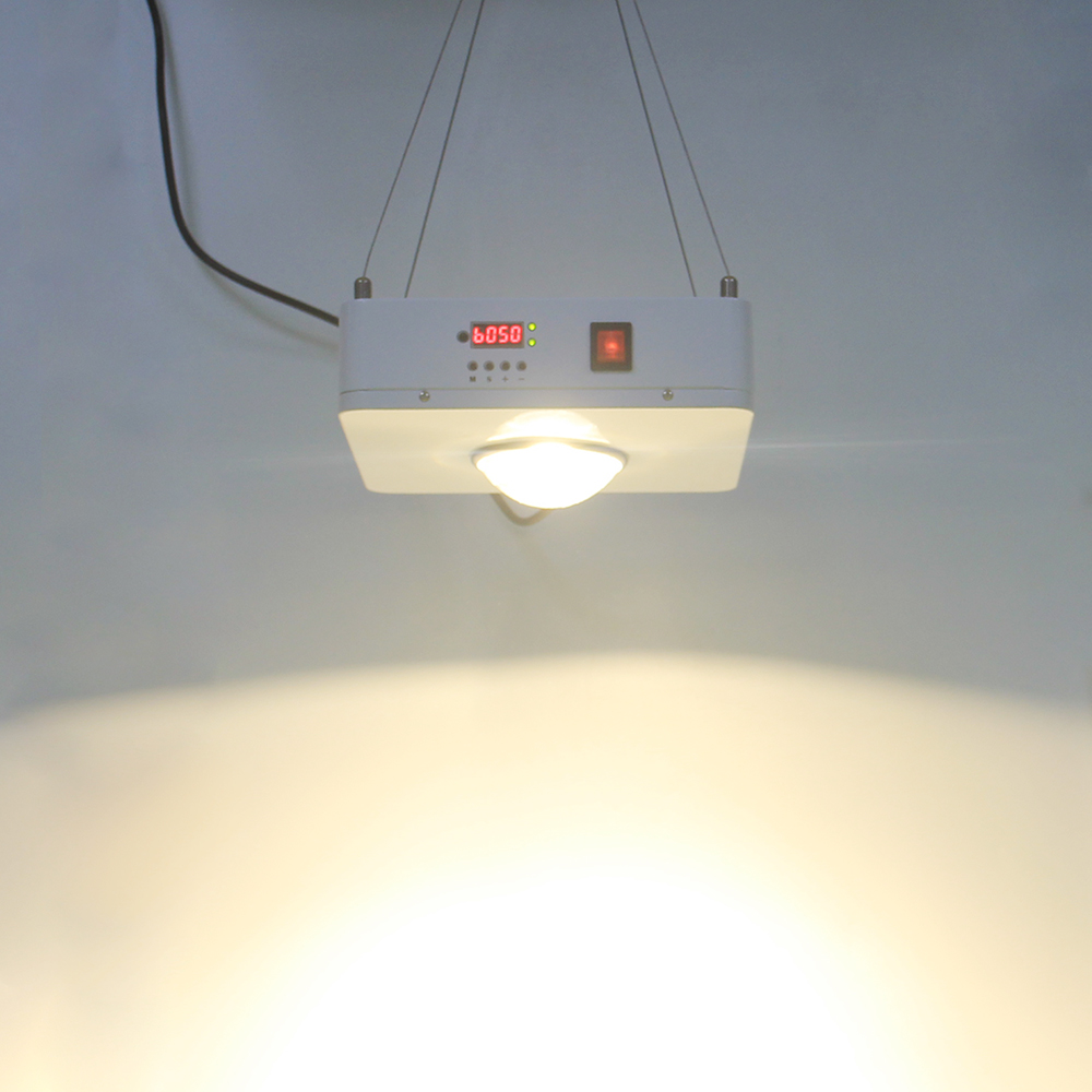 LED 100W Grow HPS