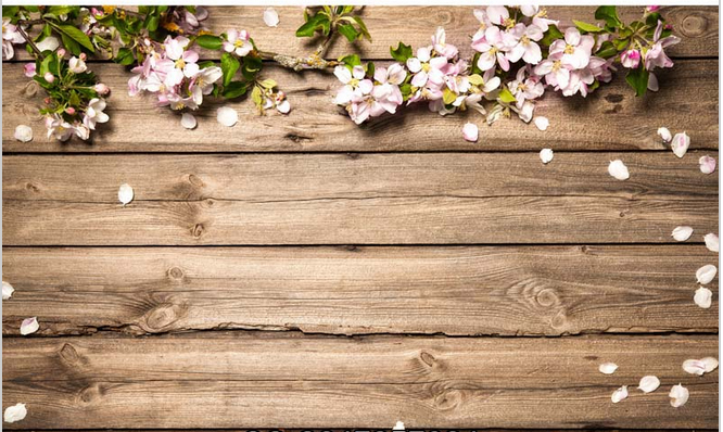 5x7ft Tan Buff Timber Wall White Flowers Branch Petals