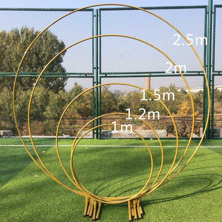 78.8Inch 2.5M Circle Wedding Birthday Arch Decoration Background Wrought Prop Single Arch Outdoor Lawn Mesh Screen Road Guide,Diameter 1.2M,Golden Circle