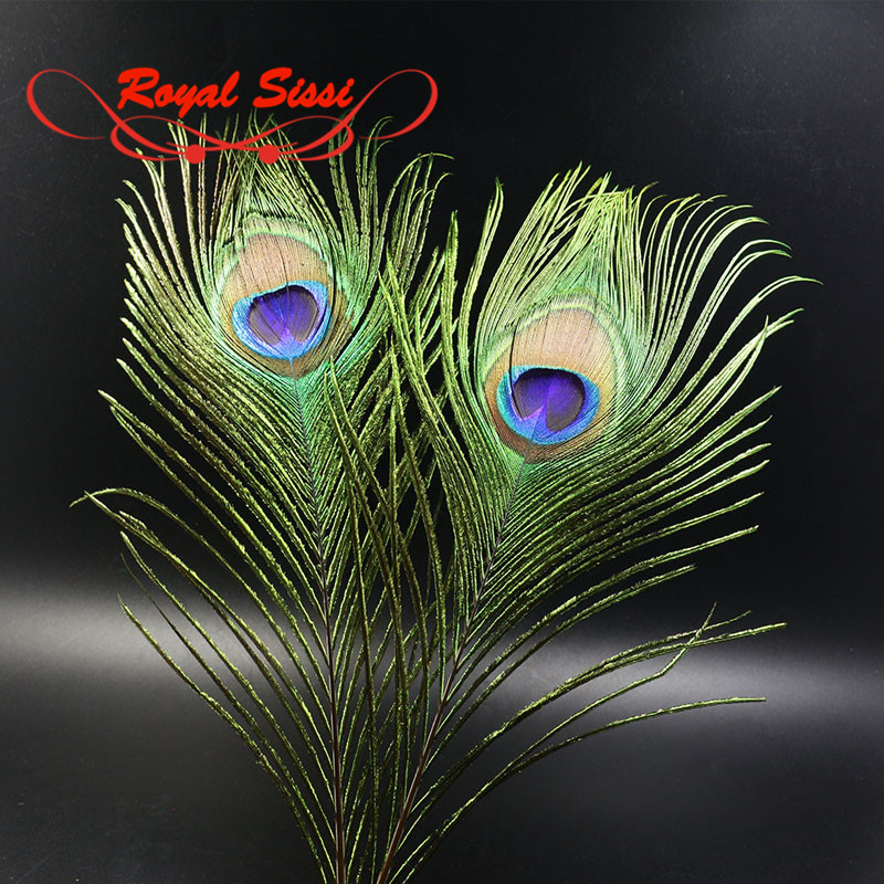 10 pcs Natural Peacock Tail Eye Feathers for Fly Tying Streamer Slamon Flies Olive Peacock Hair Fly Fishing Lure Bait Materials