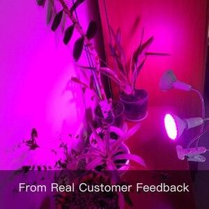 Image 5 - Luz LED de cultivo de espectro completo Fitolamp hidropónico Phyto lámpara fito lámpara para plantas de plantones de flores vegetales iluminación