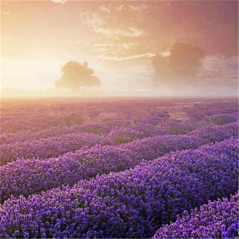 100 pcs Italiano Herança Encantador da flor da alfazema Perfumada flor vaso de plantas Em Crescimento Rápido ao ar livre, a Beleza de Seu Jardim planten