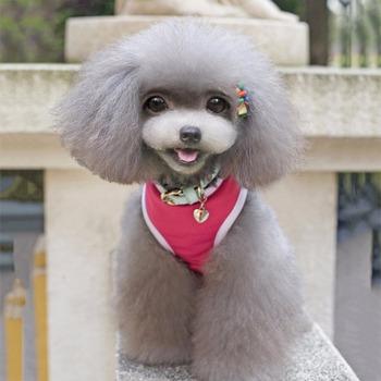 Lato Chihuahua pomorskie yorkshire T-shirt dla psa dla małych psów kamizelka koszula lato bawełna ubrania dla kota zwierzęta domowe są dostawcy tanie i dobre opinie 100 bawełna Wszystkie pory roku