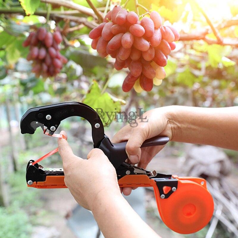* Garten Hand Werkzeuge Trauben Binden Maschine Obst Und Gemüse Binden Ausrüstung Legierung Stahl Verzweigung Garten Werkzeuge Für Frauen