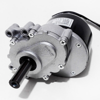 DC Brushed Gear Decelerate Motor 1016Z 24V 250W 120RPM 75RPM Unite Motor for Electric Wheelchair