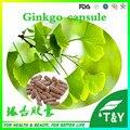 Fonte da fábrica 100% Natural Extrato de Ginkgo Biloba 500 mg cápsulas com Frete grátis * 600 pcs 10:1