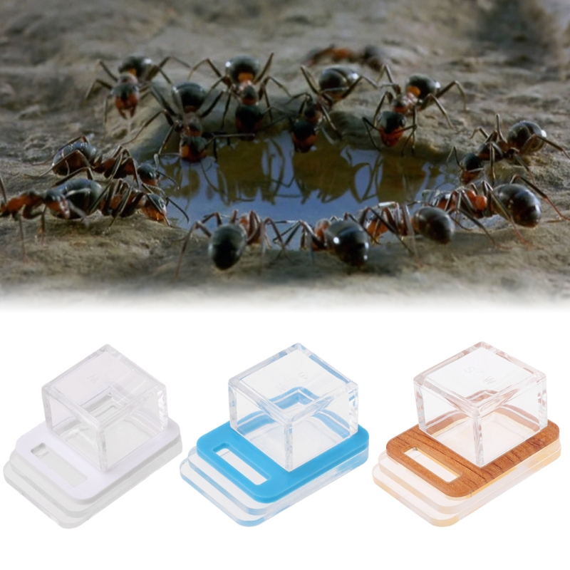 Ants Nest Water Feeding Ant Farm Insect Nests Pet Ant Villa Water Feeders