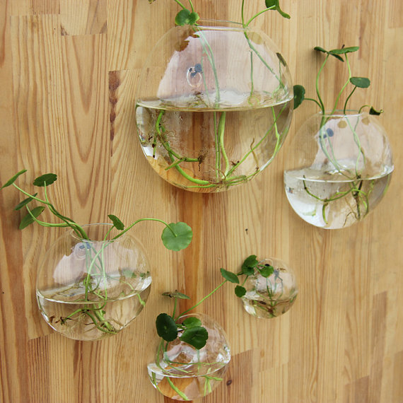 5pcs/set wall planter glass vase,wall fish tank for home and ...