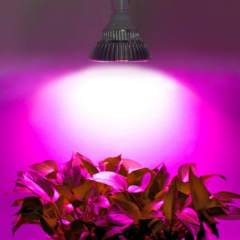 Levou Crescer Luzes plena luz espectro Características : Full Spectrum Grow Light
