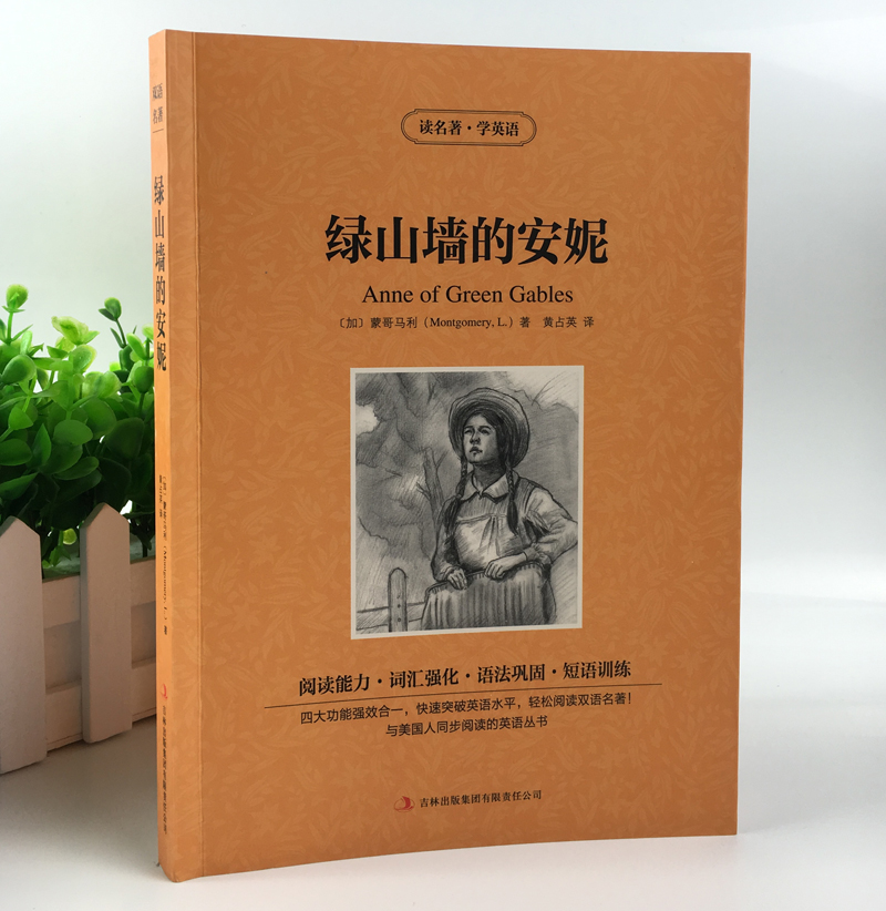 Anne of green gables Bilingual Chinese and English world famous novel (Learn Chinese Hanzi Best Book) a chinese english dictionary learning chinese tool book chinese english dictionary chinese character hanzi book