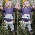 Floral Cabritos Del Niño de los Bebés Ropa Fijada Ropa Flor Sudadera Pantalones Trajes Casuales 2 UNIDS Ropa Fijada