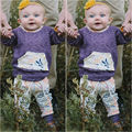 Floral Toddler Kids Baby Girls Clothes Set Flower Clothing Hooded Pullover Pants Outfits Casual 2PCS Clothes Set