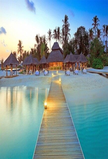 Laeacco belle palme tropic isola ponte di legno for Immagini spettacolari per desktop