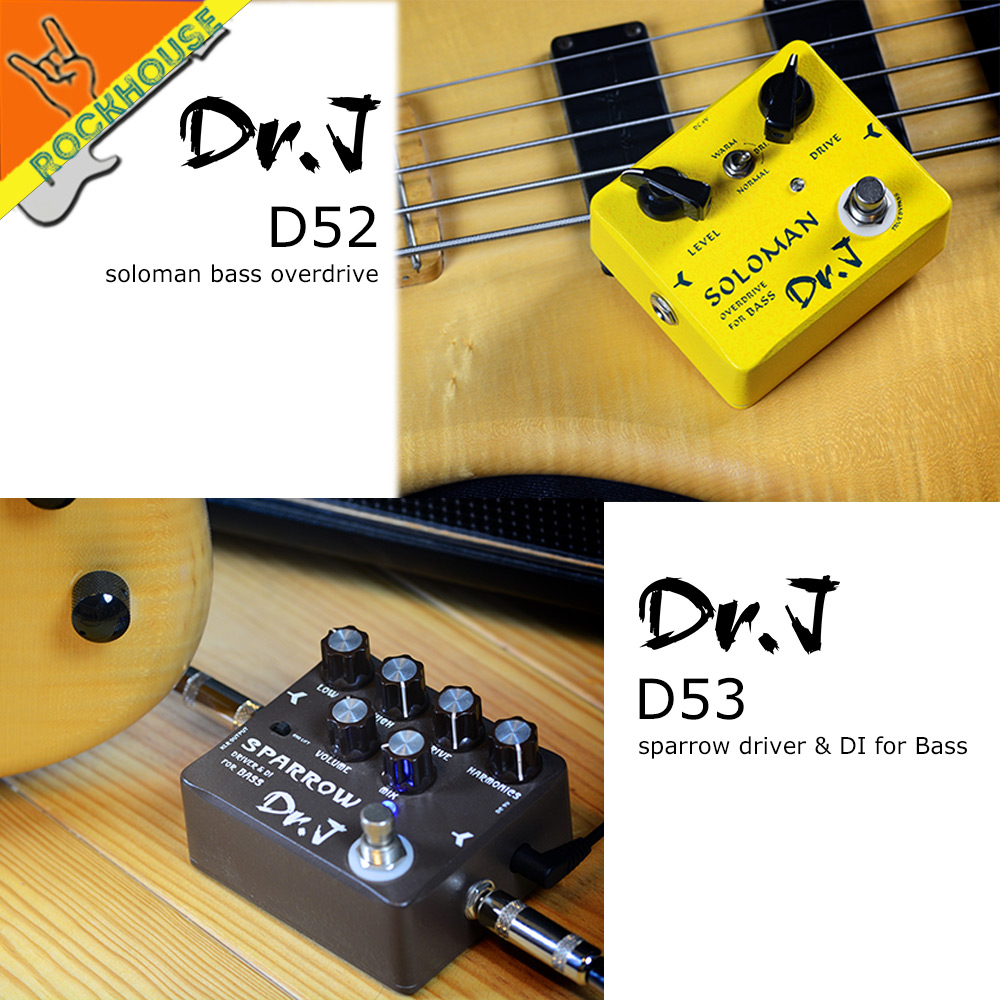 Dr.J Handmade Bass DI Pedal Bass Overdrive Effects pedal Classic Tube Sound Smooth and Warm True Bypass Free Shipping nematode parasite infesting lizard and their physiological effects