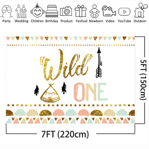 Image 3 - Mehofoto Wild One Birthday Photo Background Baby Party Banner Backdrop Newborn Gold Sequin Customized Backdrops for Studio Shoot