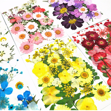 Pressed dried flowers Mixed Organic Natural Dried Flowers DIY Art Floral Decors Collection Gift�Epoxy Resin Nail Art Decors Jewe