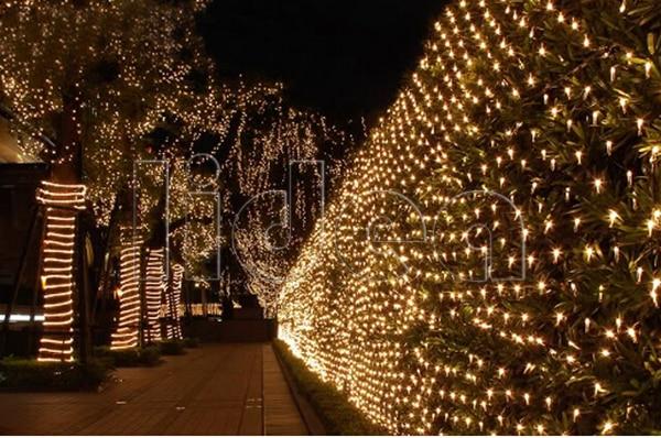 1.5 * 1.5M 100 LED Party Γάμος Κήπος Νέο Έτος Net - Φωτισμός διακοπών - Φωτογραφία 5