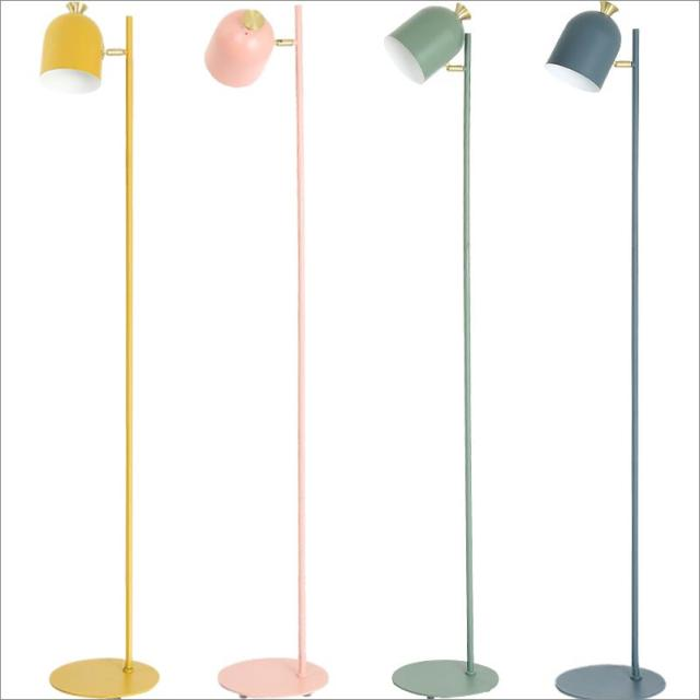Nordic Macarons Adjustable Shade Up Down Iron Floor Lamps Painted