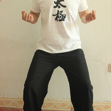 Тай Чи футболки для женщин и мужчин хлопок короткий рукав Кунг фу Униформа