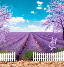 10*6.5 feet (300*200 CM) nhiếp phông nền chụp ảnh fotografia Đá windmill flowers