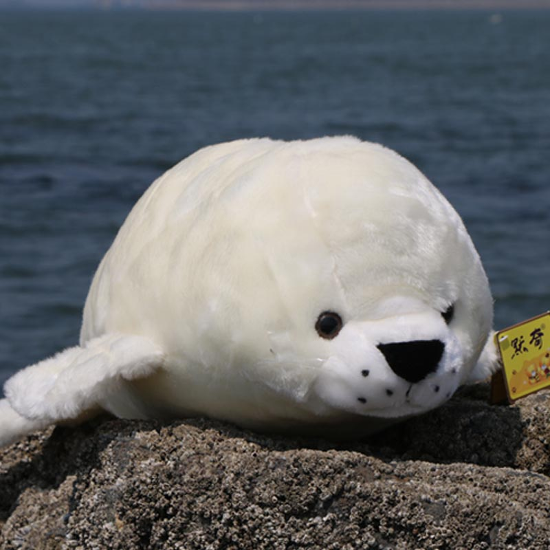 ФОТО new plush high quality seal toy lovely white simulaiton seal doll about 60cm